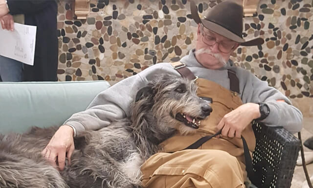 Man and his large dog on a bench