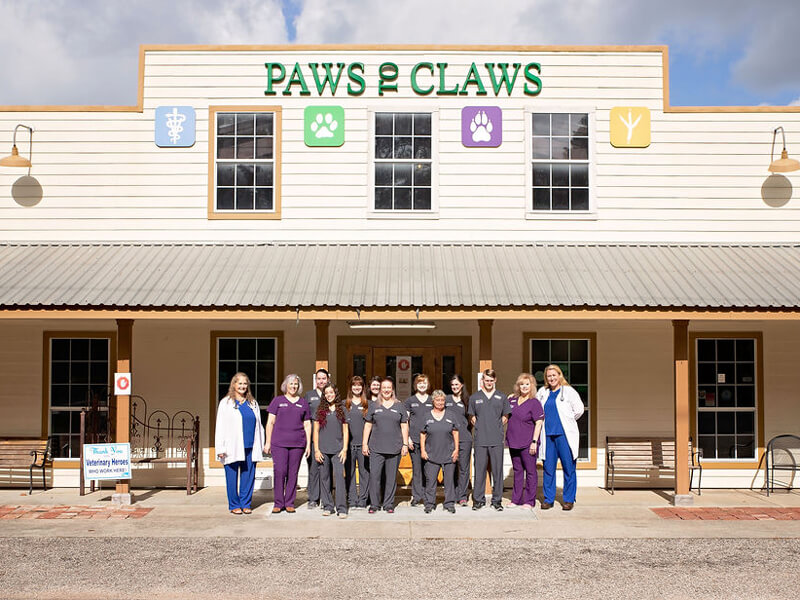 The Paws to Claws staff posing in front of the clinic.